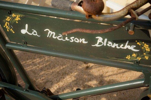 画像1: バラに覆われた看板になった自転車 (1)